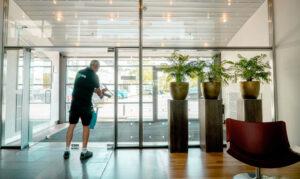 Vinduespolering og kontorbeplantning